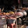 abenteuerreise thailand - hunde7
